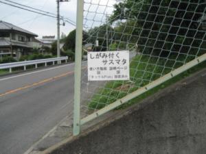 道路わきの網フェンスに